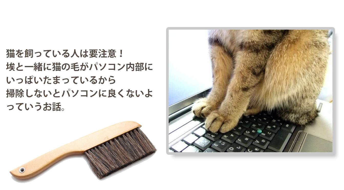 パソコンには猫の毛や埃がいっぱい詰まっているから掃除しよう